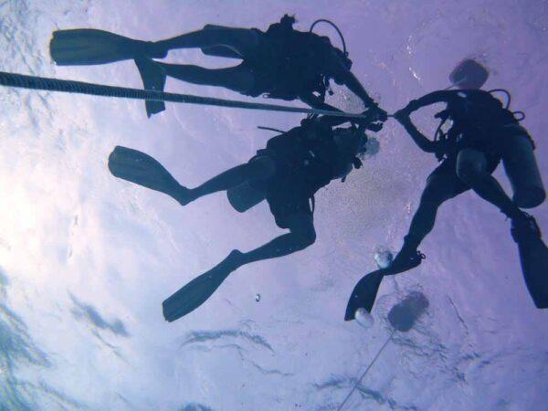 PADI Open Water Diver Course eLearning Kota Kinabalu