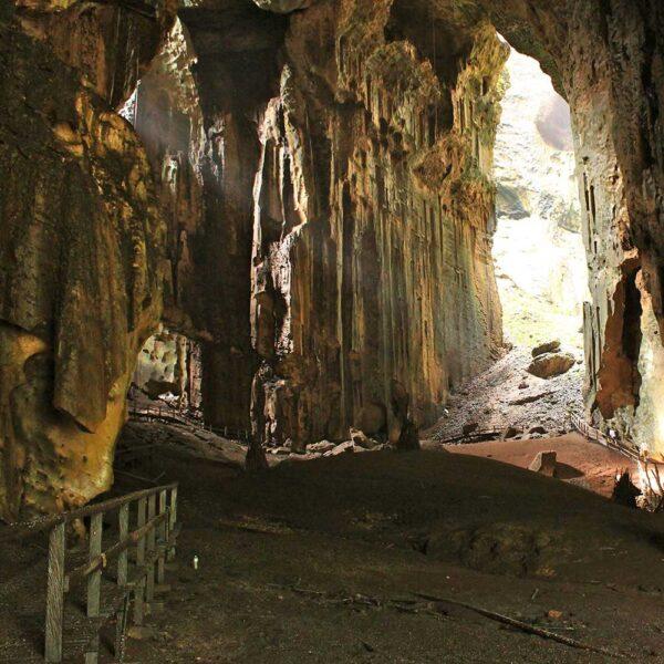 Gomantong Caves Kinabatangan River Cruise Sandakan | Borneo Dream Dive Shop
