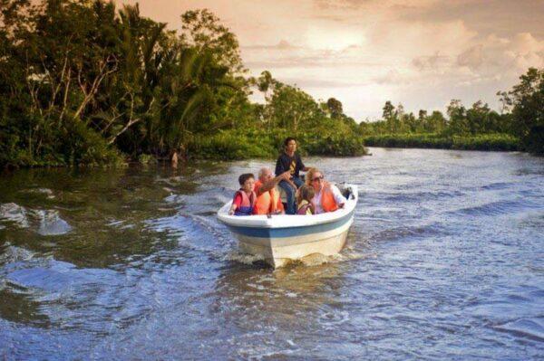 Cruise the Klias Wetlands River Cuise Tour Kota Kinabalu