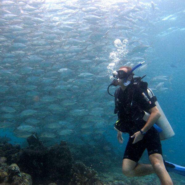 PADI Open Water Diver Kota Kinabalu | Borneo Dream Dive Shop
