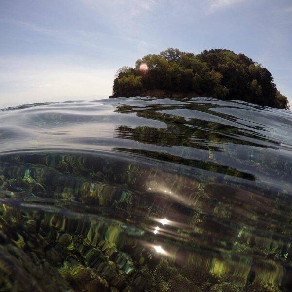 Guided snorkellers for below floating in Kota Kinabalu
