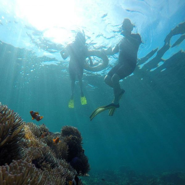 Jungle Trek & Guided Snorkeling Day Tour in Kota Kinabalu with Borneo Dream