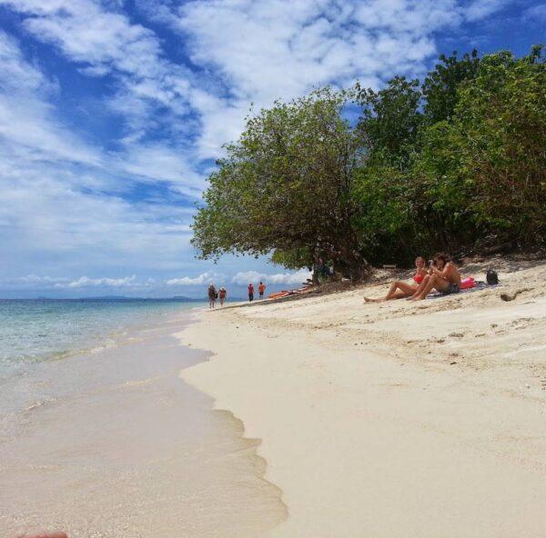 Turtle Island & Kinabatangan River Cruise Tour Sandakan | Borneo Dream Dive Shop