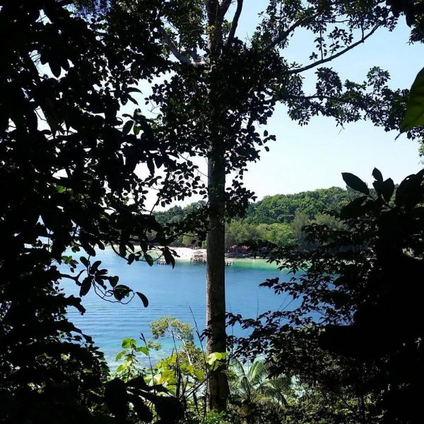 Pulau Gaya Jungle Trekking Day Tour