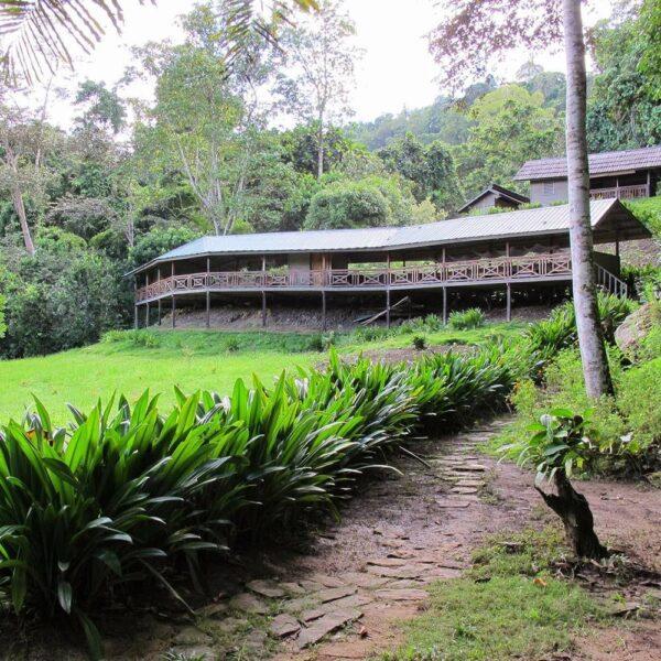 Pungiton Camp located high on the riverbank at Orou Sapulot