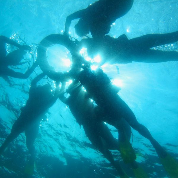 Coral Reef Conservation Day Tour