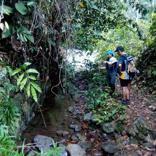 Join a Jungle Trek As Part of Your Mountain Biking Adventure in Borneo