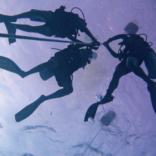 PADI Scuba Diver Upgrade | Divers ascending a  shot line