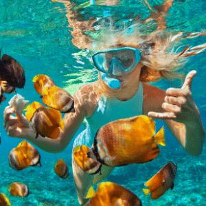 Best Snorkeling in Kota Kinabalu, Sabah