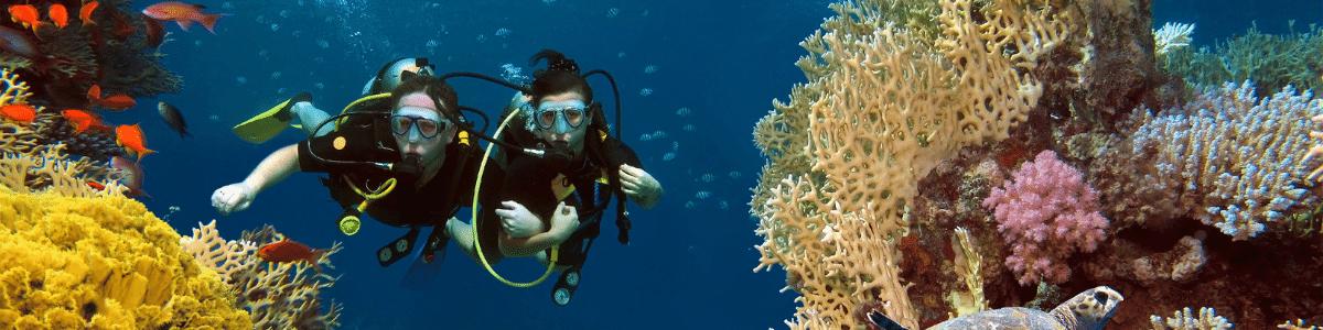 PADI eLarning Advanced Open Water Diver Course in Kota Kinabalu, Sabah
